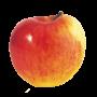 Pomme Gala - France