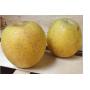 Pomme Goldrush- France