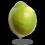 Citron Jaune Verdello- Espagne